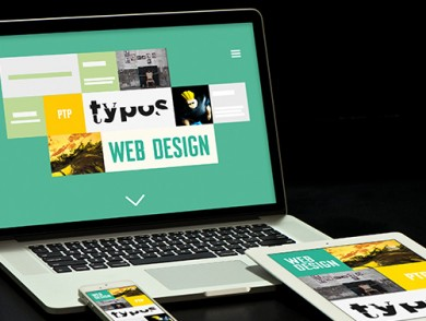 Web Design - Professional Training Program